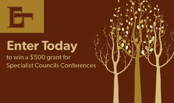 Apply for a grant for Conference!